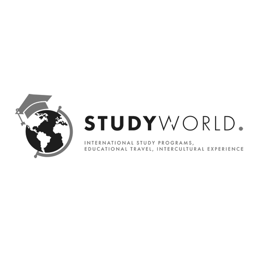 logo studyworld grey